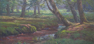 Stream, New Forest