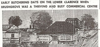 <b>Early Butchering days on the lower Clarence when Bushgrove was a thriving and busy commercial centre</b>